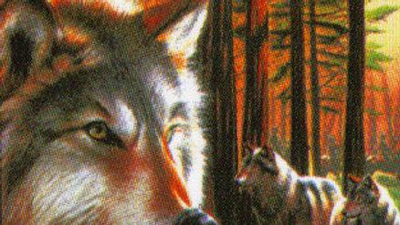 Wolf Sml bandana