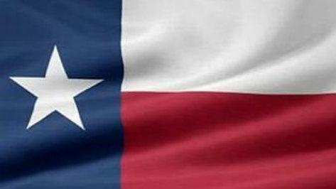 Texas Flag 5' x 3ft