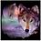 Thumbnail: I Am Wolf Black (USA23)