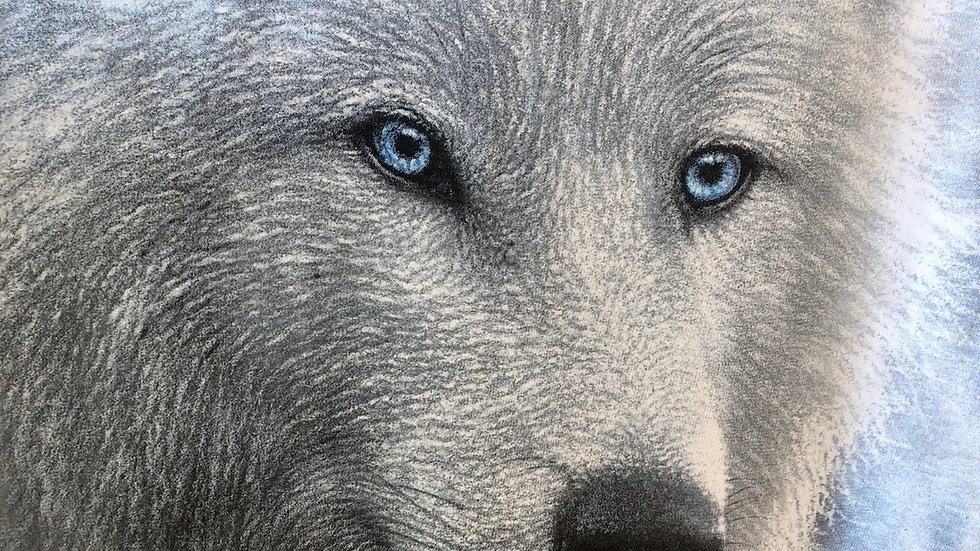 Blue Eyed Wolf  M03
