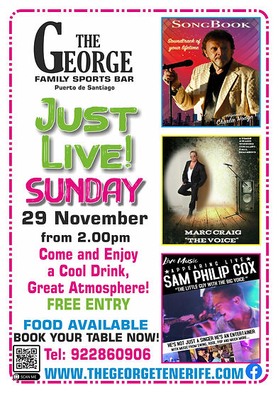 The George Just live Music 29-11.jpg