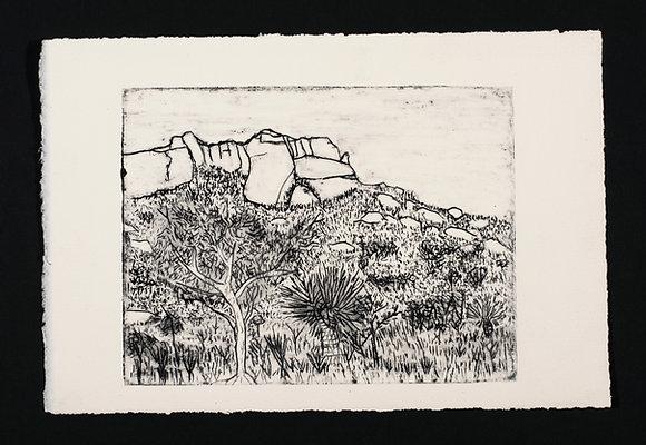 Black Ant Art - Allan Mansell - Chimlee Hill