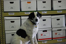 file storeage is clean orginanizeds and secute,
