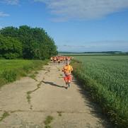 On the perimeter track around Tarrant Rushton