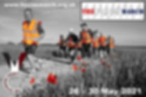 Poppies 2021.jpg
