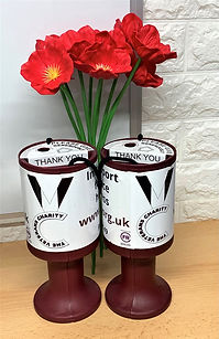 Pots and poppies.jpg