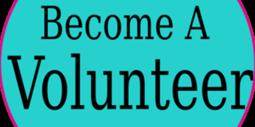 Become a Dream Team Volunteer