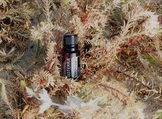 L'huile essentielle de Copaïba de chez DoTerra, le CBD et l'endométriose