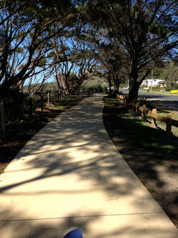 Shared Walking & Cycle Paths
