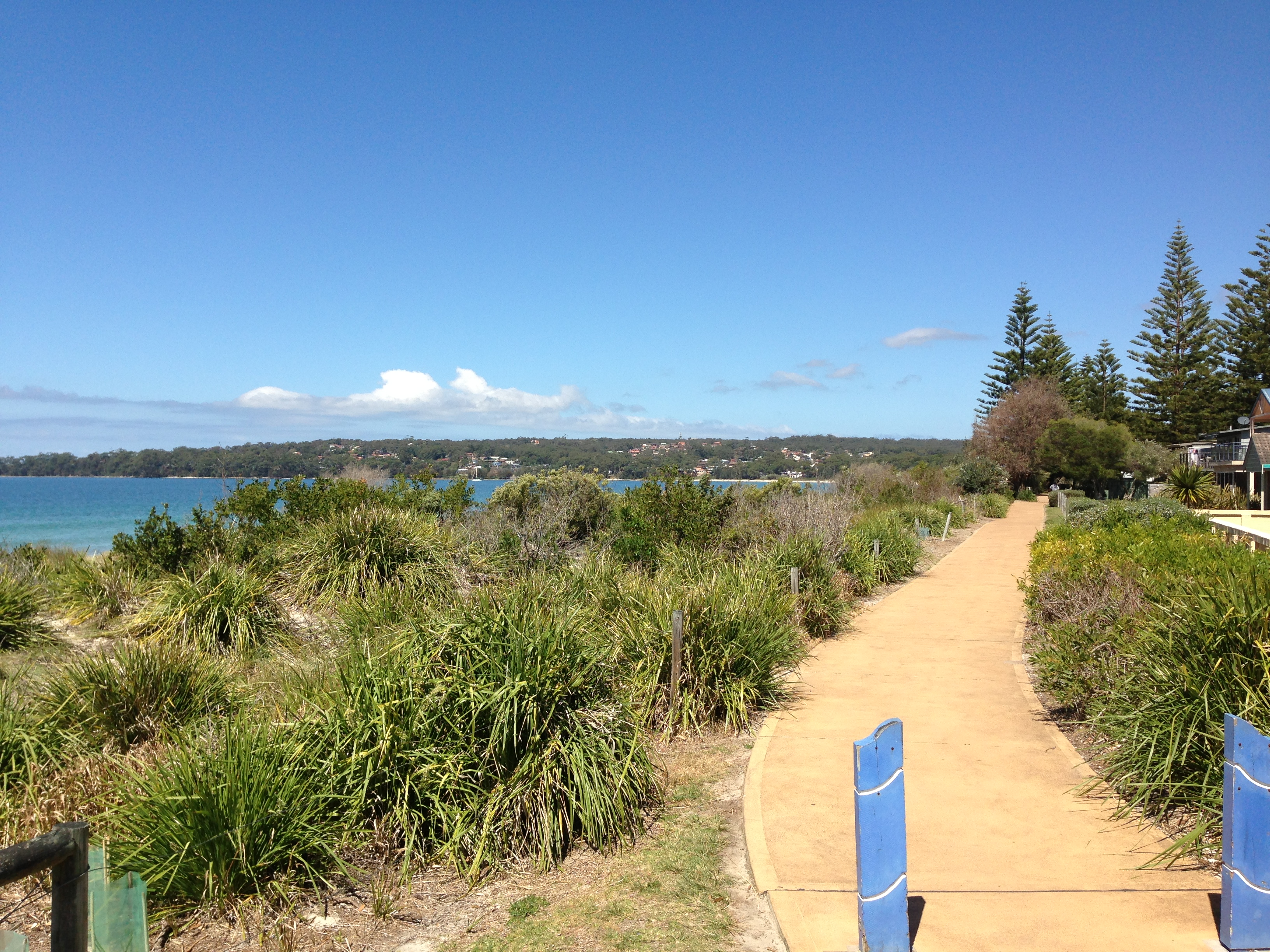 Cycleway alongside Collingwood Beach