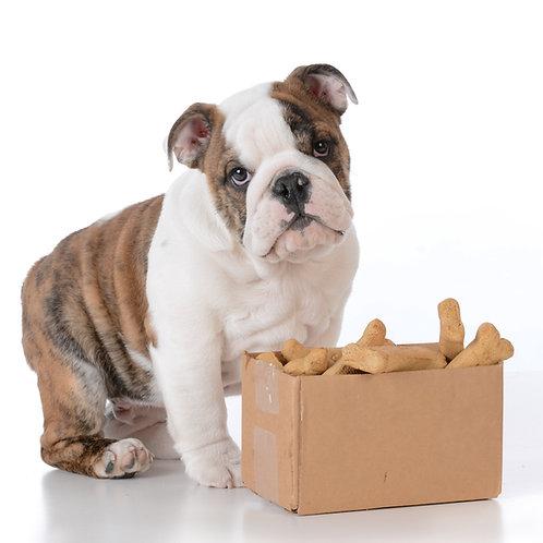 Pumpkin & Peanut Dog Treats