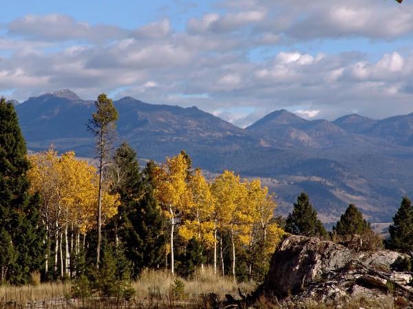 Yellowstone in Fall