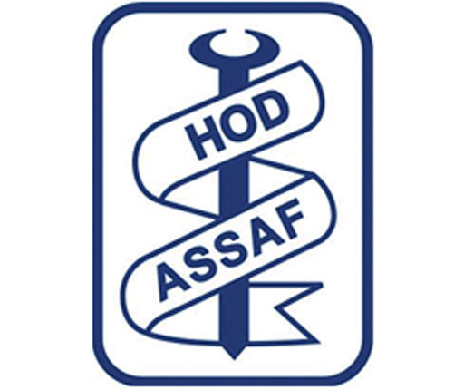 Hod Assaf Metals