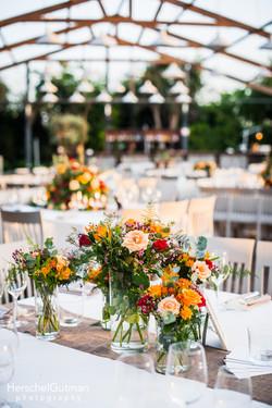 47-Roxy-and-Adame-Wedding
