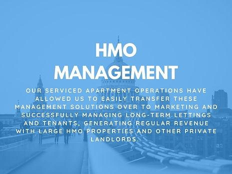 hmo management.jpg