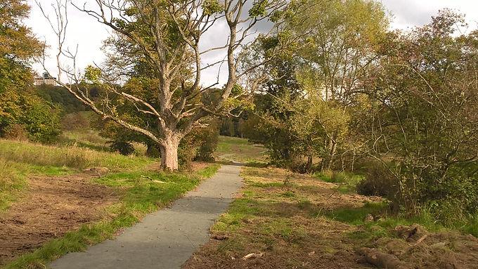 Positive Steps Eco Walk