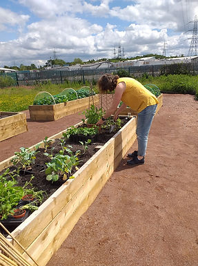 Gardening Club at Clydesmill (1)