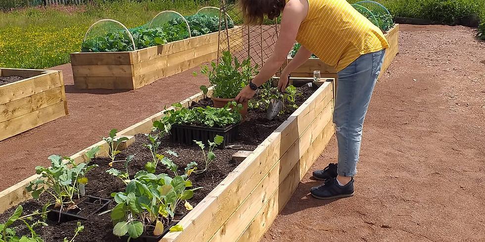 Gardening Club at Clydesmill