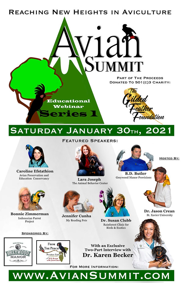 summit.poster.jpg