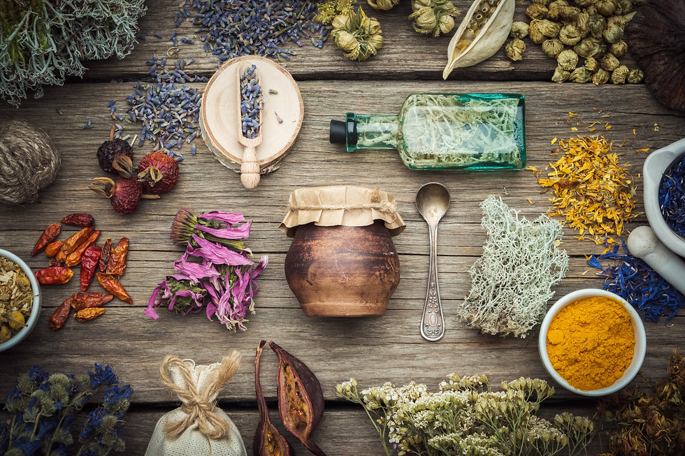 Dry medicinal herbs, plants, roots, ingr