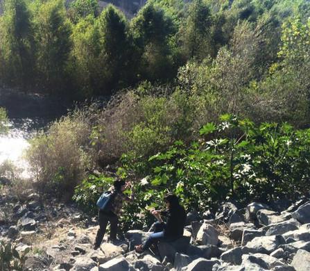 Sampling the Santa Ana River