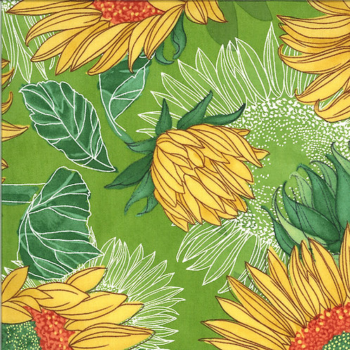 Solana | Sunflowers Sprout by Robin Pickens for Moda Fabrics
