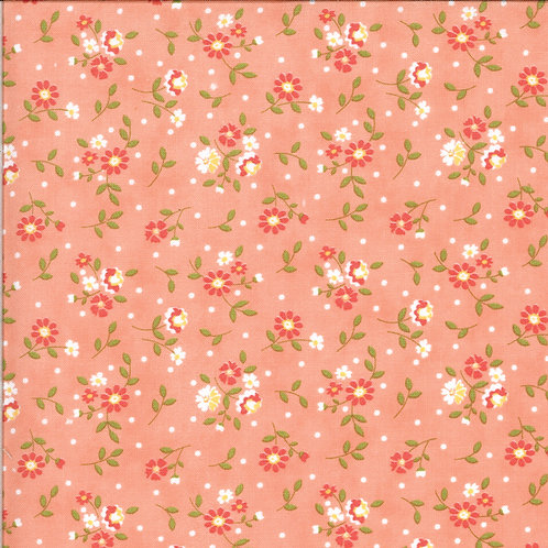 Canning Day Apricot by Corey Yoder for Moda Fabrics