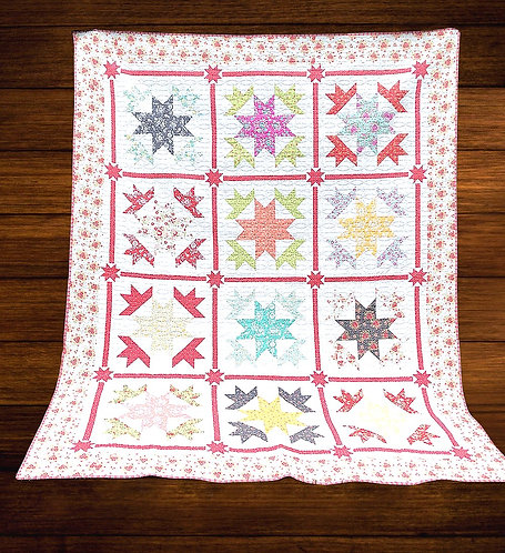 Cotton Fronk Quilt Kit featuring Canning Day Collection by Corey Yoder