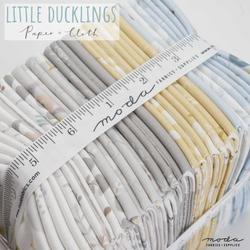 Little Ducklings Coming Soon