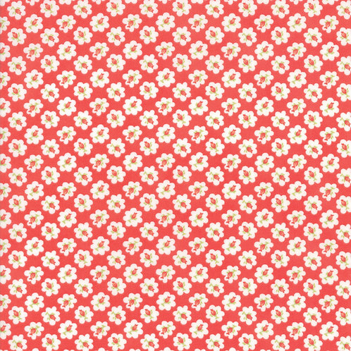 Catalina Lollipop Cotton Blossom  Yardage By Fig Tree Quilts