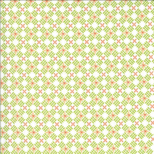 Apricot & Ash Pistachio  By Corey Yoder for Moda Fabrics