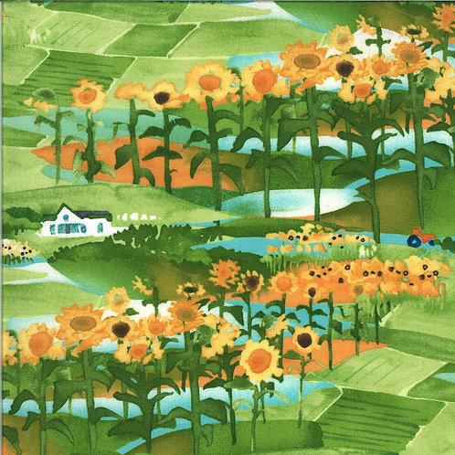 Solana | Scenic Clementine by Robin Pickens for Moda Fabrics
