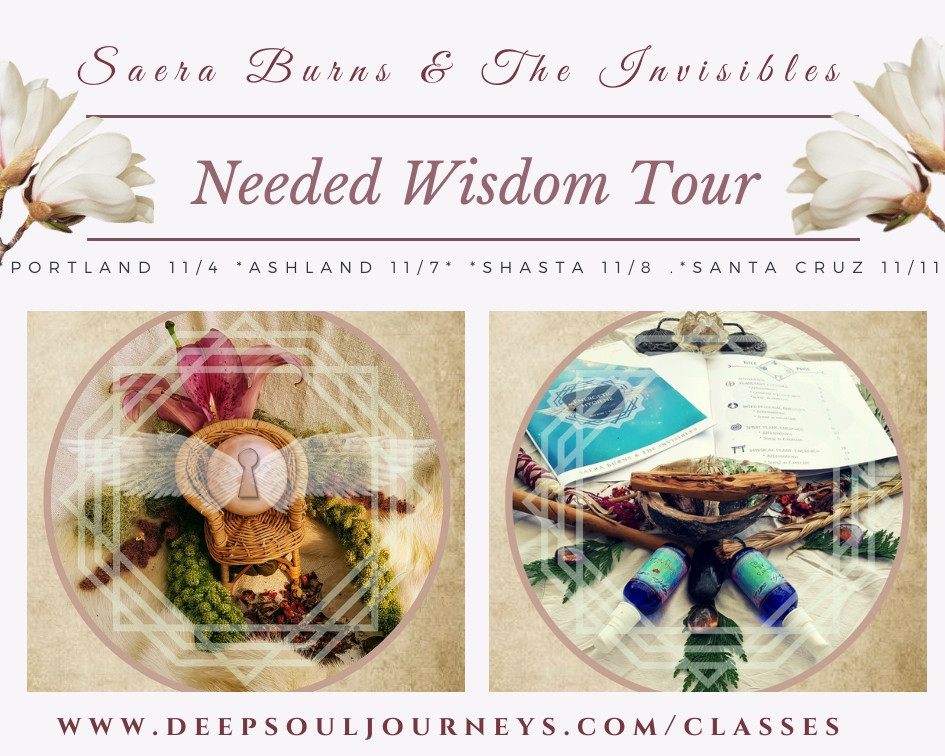 Saera Burns & The Invisible's.jpg