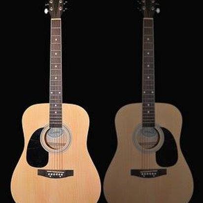 Electric Acustic Guitar