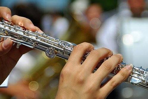 Flute Traversa