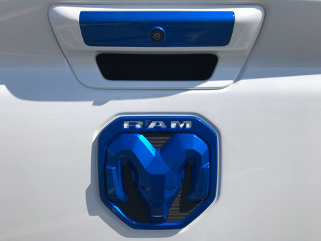 White and Blue Ram