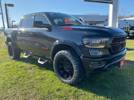Black and Red Ram Big Horn