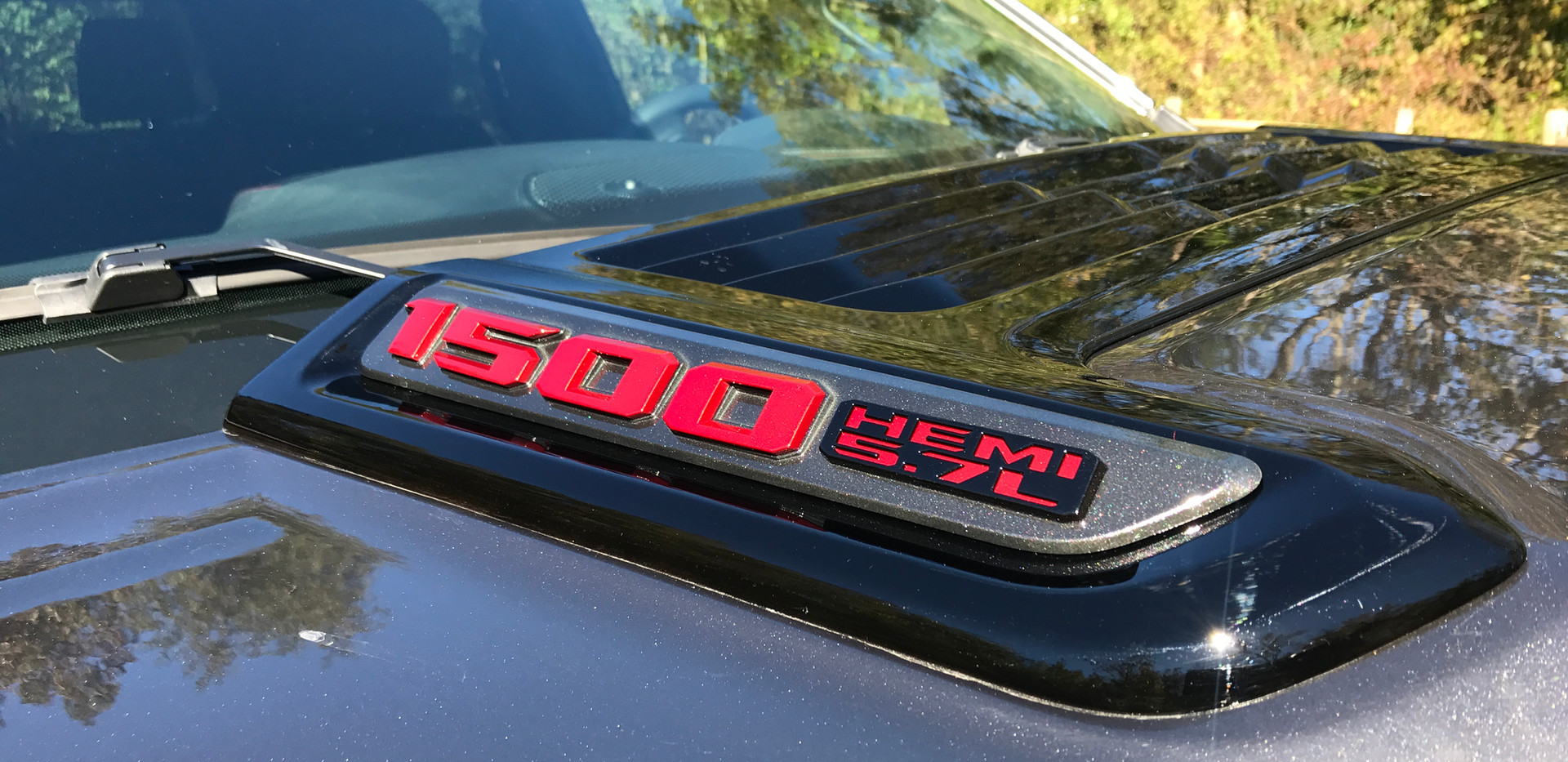 Grey Black and Red Ram