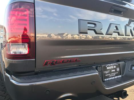 Urban Ram Rebel