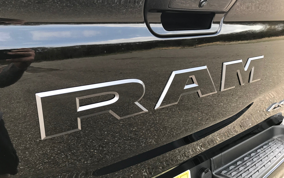 Black and Silver Ram