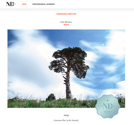 NDawards2018_premio.jpg