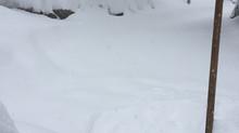 もう雪は見たくない!