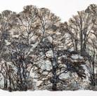 Blue Mist Forest