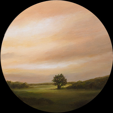 Tree Before Pasture
