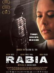 rabia-2009-orig-poster.jpg