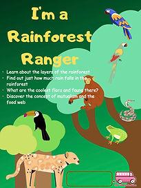 Rainforest.jpeg