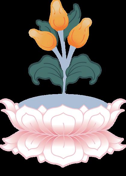 SowaRIgpa_logo2_edited.png