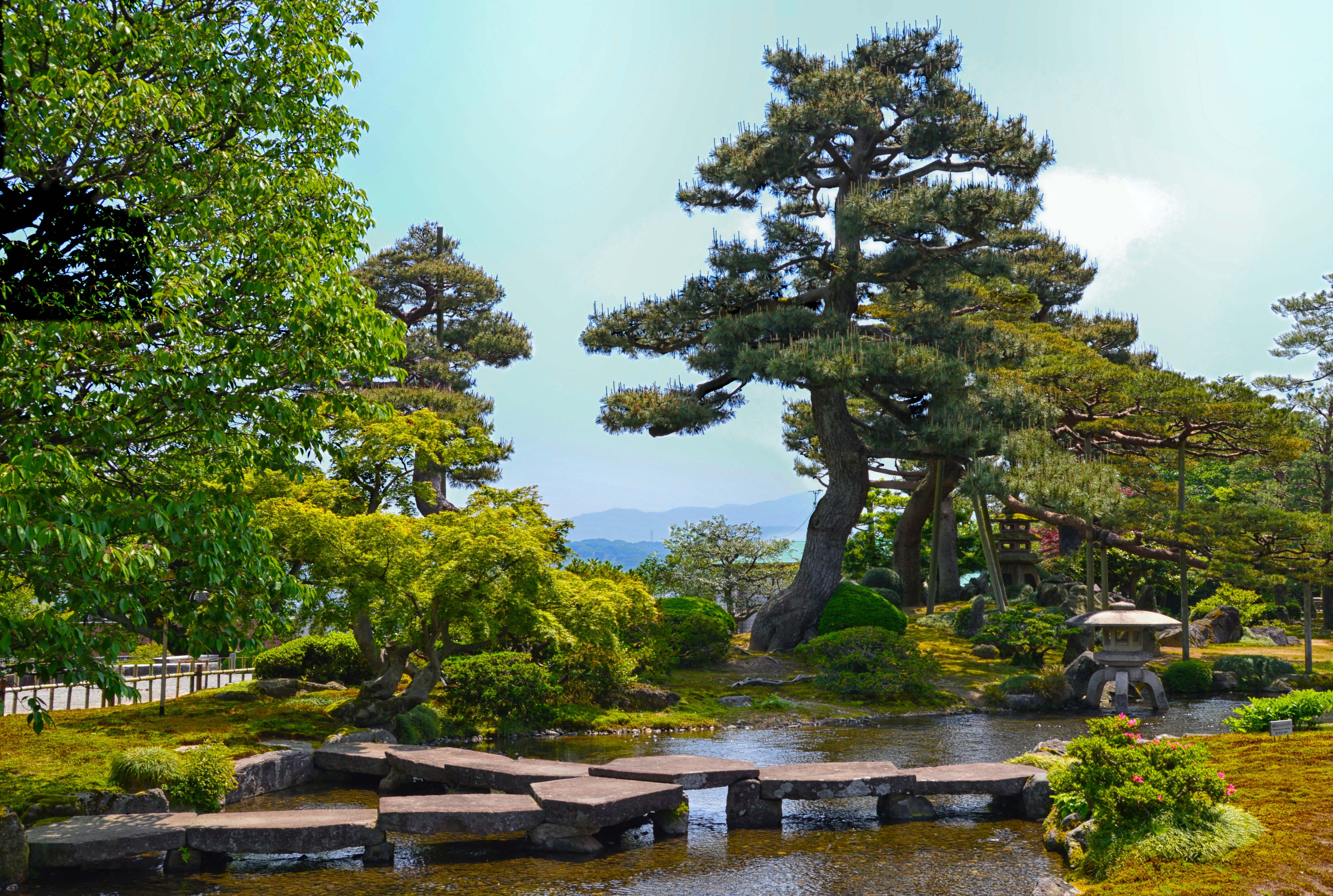 Japan garden_3a
