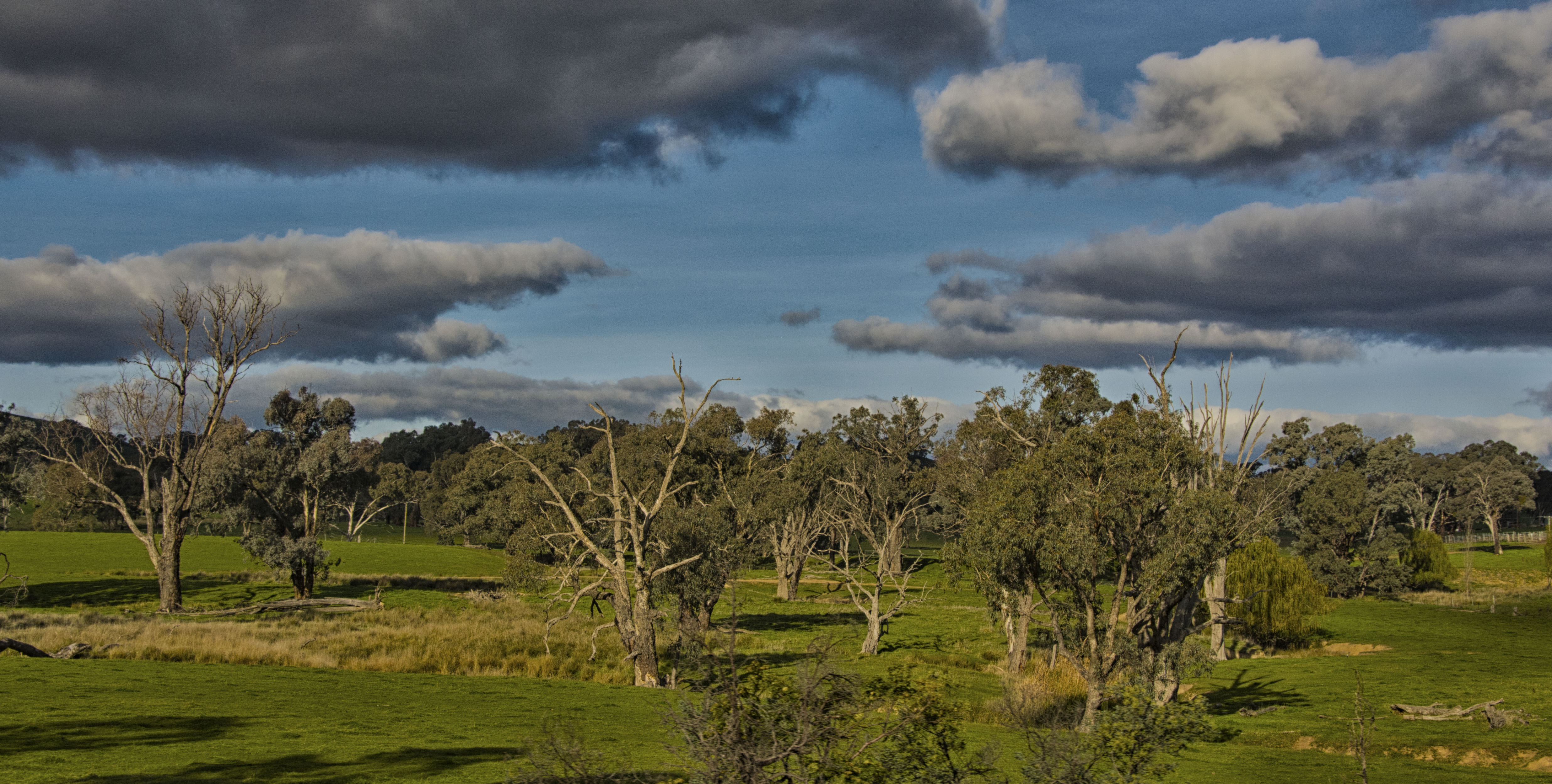 Sydney country side