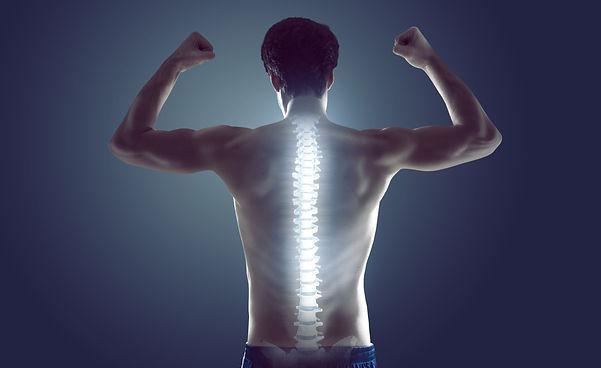 Strong spine.jpg